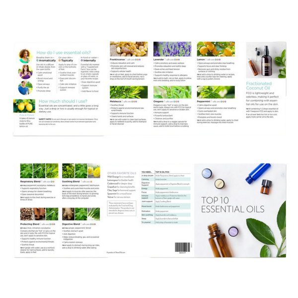 Top 10 Essential Oils Trifold Brochure Bulk Pack 25 Overall