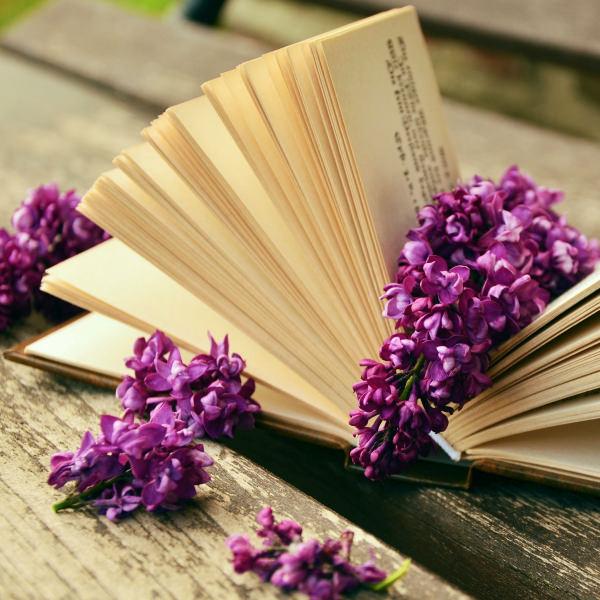 OW_Shop_Book_Tile_600x600