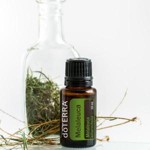 dōTERRA Essential Oils Melaleuca