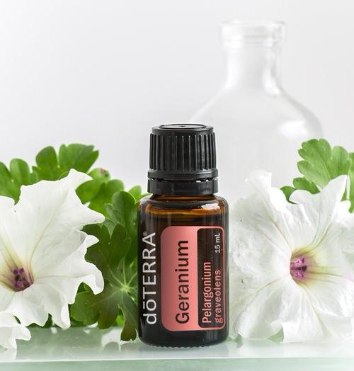 how to make geranium essential oil at home